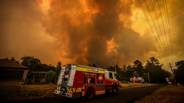 How to Help Those Affected By the Australian Wildfires