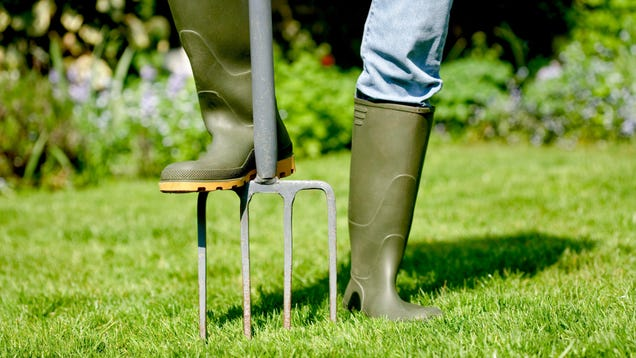 How to Aerate Your Lawn (and Why You Should)